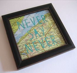 never-say-never2