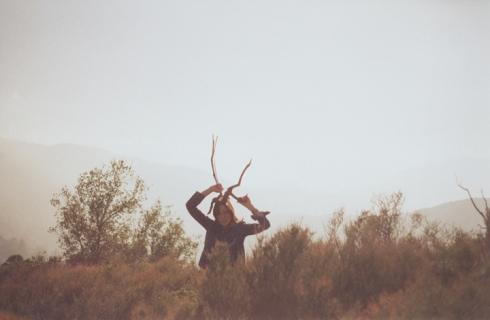 19_horns