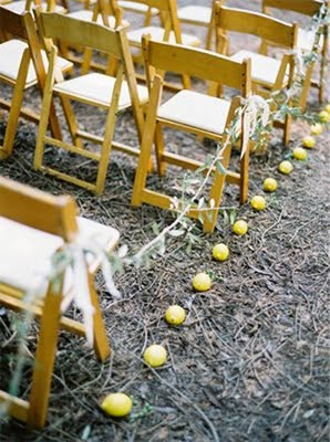 12-lemons-wedding