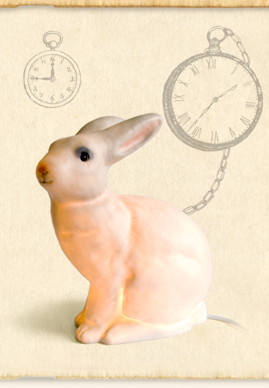 shop_rabbit_on